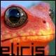 eliris