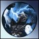 StormCatcher.77